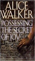Alice Walker, Possessing the Secret of Joy, Female Genital Mutilation