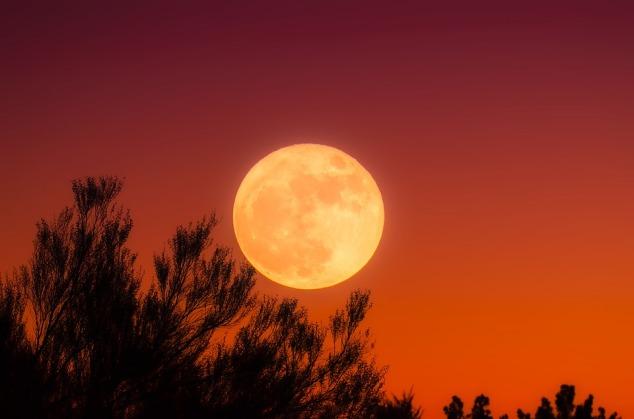 Harvest Moon, Lunar, Moon