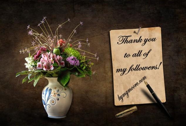 Thank You, Gratitude, Appreciation